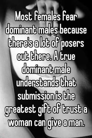 Male domination and submission