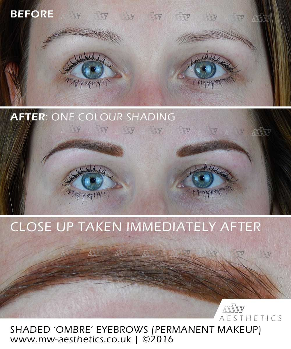 semi permanent eyebrows. Shaded Effect Eyebrows (Ombre