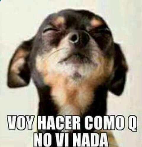 Pinterest Oldestfears Spanishlessonmemes Mexican Funny Memes Cute Memes Funny Spanish Memes