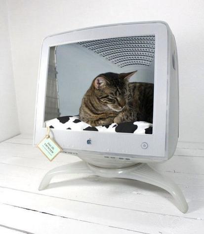 MAC CAT | topa tirar tudinho de dentro do monitor velho para transformá-lo numa moderna cama para seu gato? Inspire-se! #petbed #diy #petdecor #Tecnisa Foto: LushHome