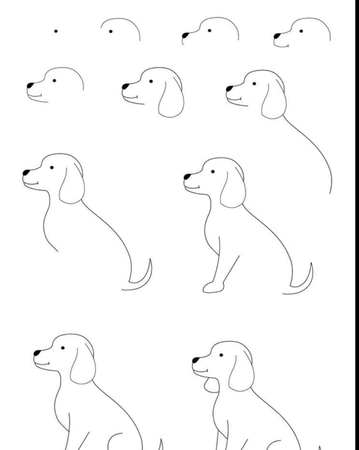 Hond Tekenen In Stappen Dieren Tekenen Leer Tekenen Coole Tekeningen