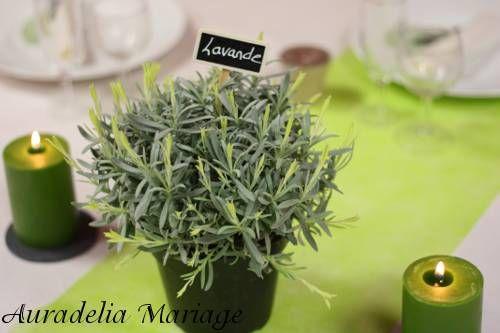 noms de plantes aromatiques pour la déco de table