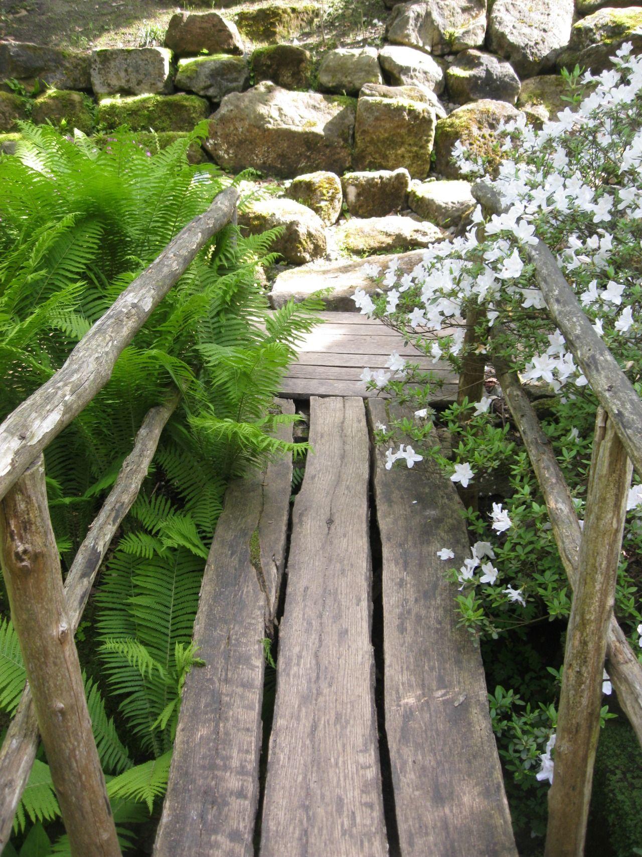 small woody bridge