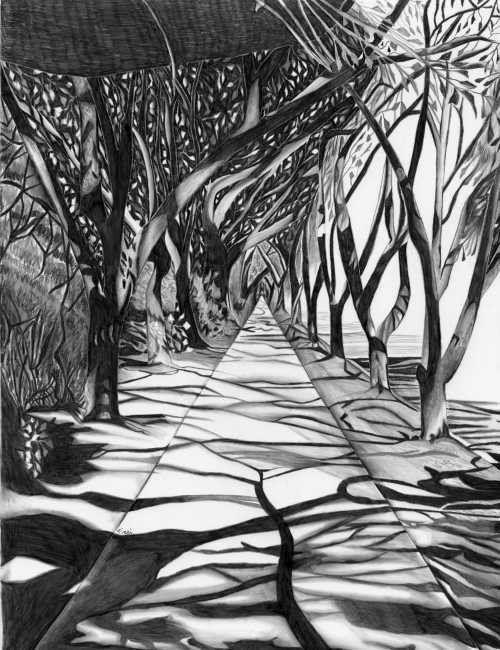 aceo path of trees pencil drawing by penciledbynicole on etsy white art black and white