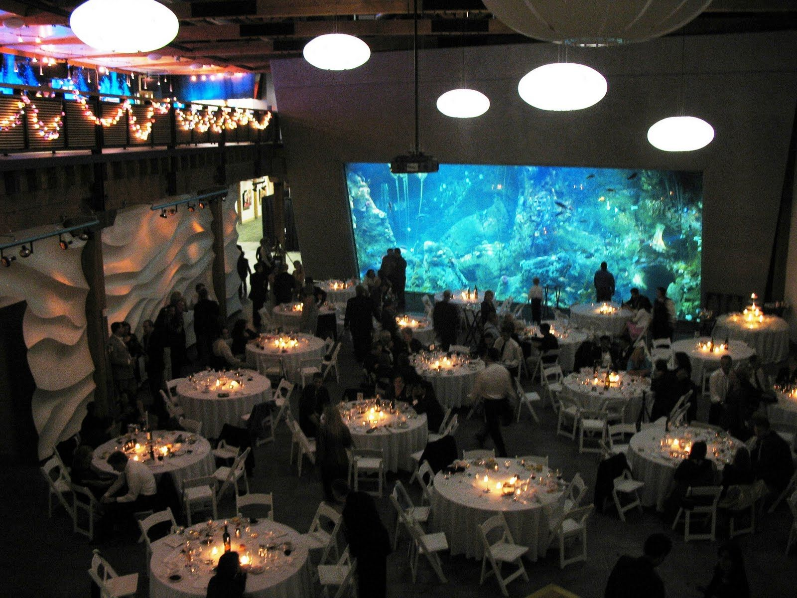 Seattle Aquarium What A Cool Place To Have Party