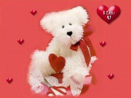 Cute teddy bears teddy bear desktop wallpapersvery cute teddy teddy bear desktop wallpapersvery cute teddy bear voltagebd Choice Image