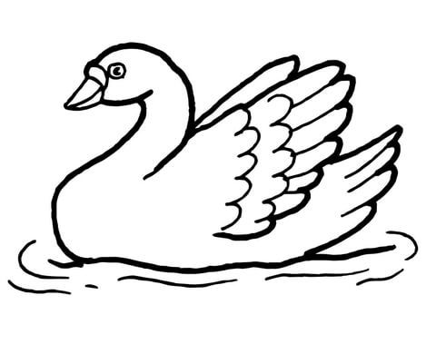 Swan Coloring Page Coloring Page Coloring Pages Swan Ve Color