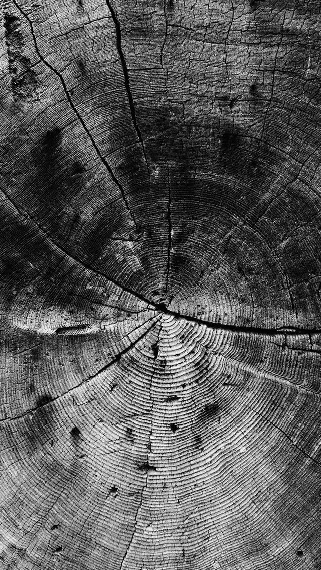 Wood Line Texture Old Dark Pattern Bw iPhone Wallpapers