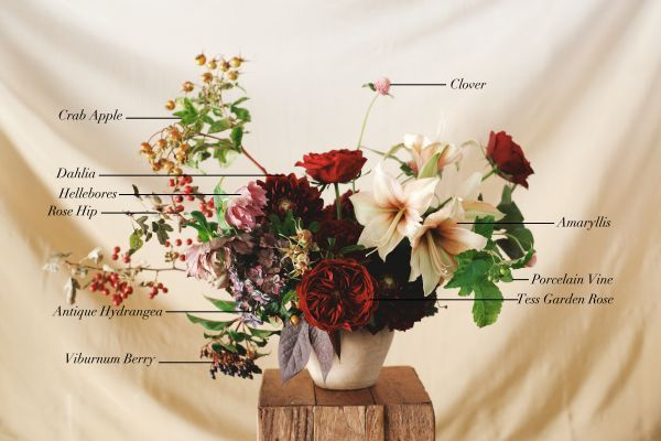 Floral Encyclopedia with Moon Canyon Design: Fall Blooms on Rip+Tan