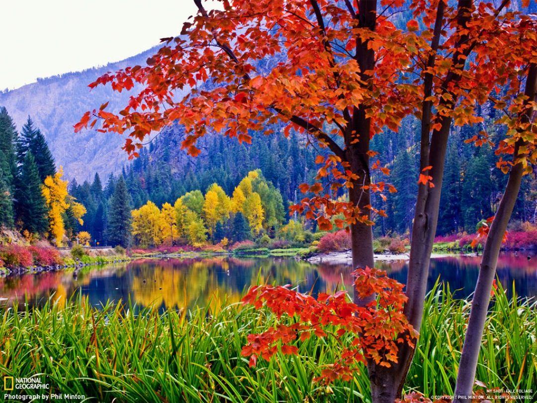 Adictamente paisajes oto ales oto o pinterest - Imagenes paisajes otonales ...