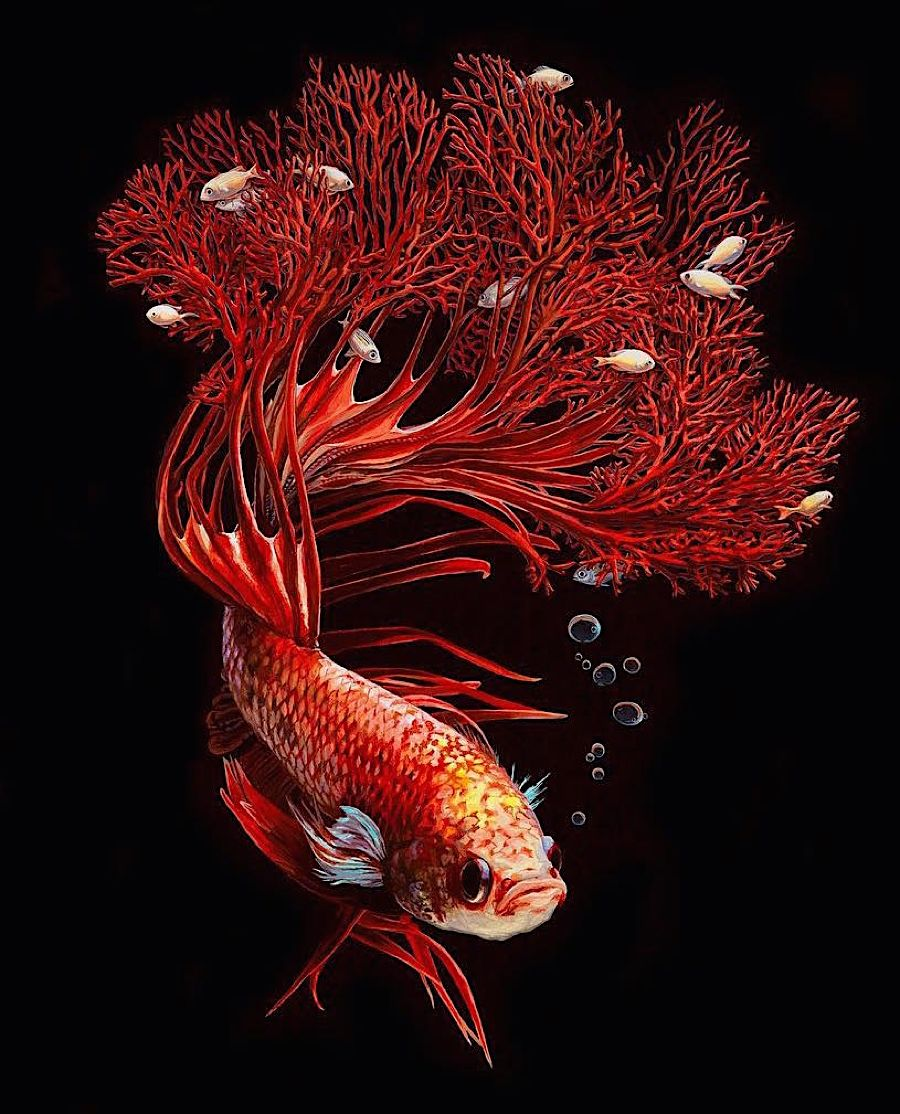 Lisa Ericson lässt Fische und ihre Umwelt verschmelzen Ein schwarzer ...