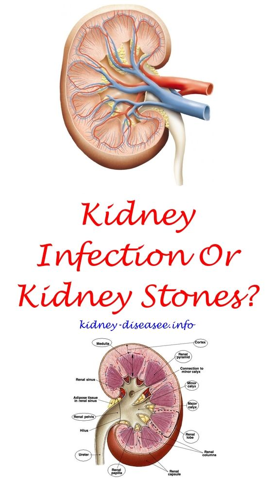 Renal Diet Protein   Kidney disease, Kidney infection and Kidney cyst