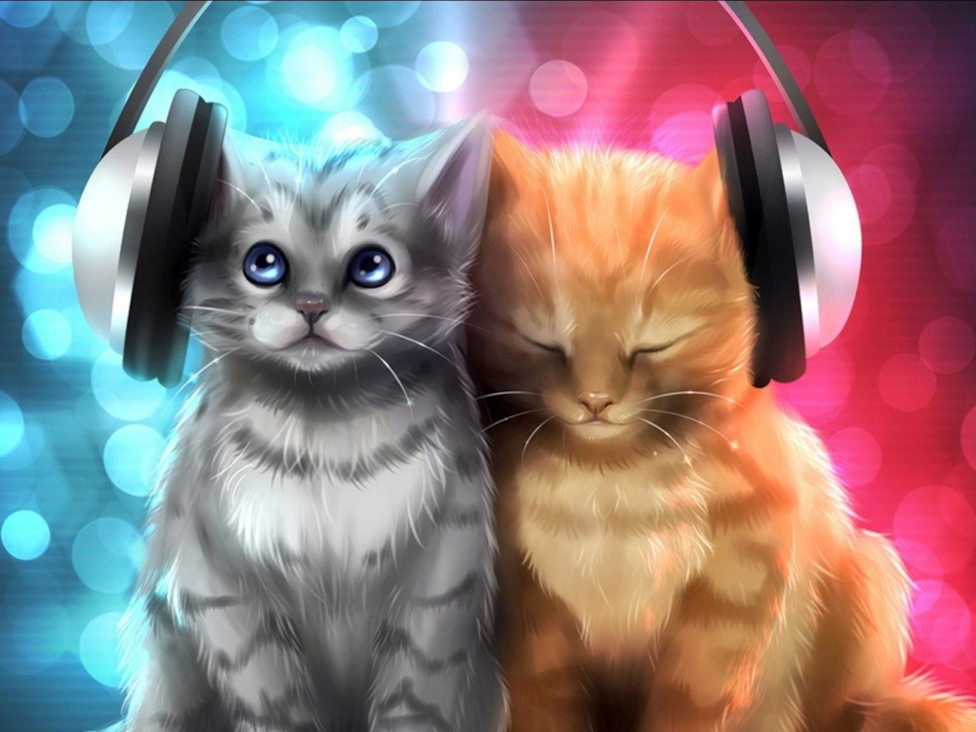 Baby Cat Cats Cute Kitten Kittens S 1080p Wallpaper Hdwallpaper Desktop Cat Background Cat Artwork Animals Cute kitty hd wallpaper