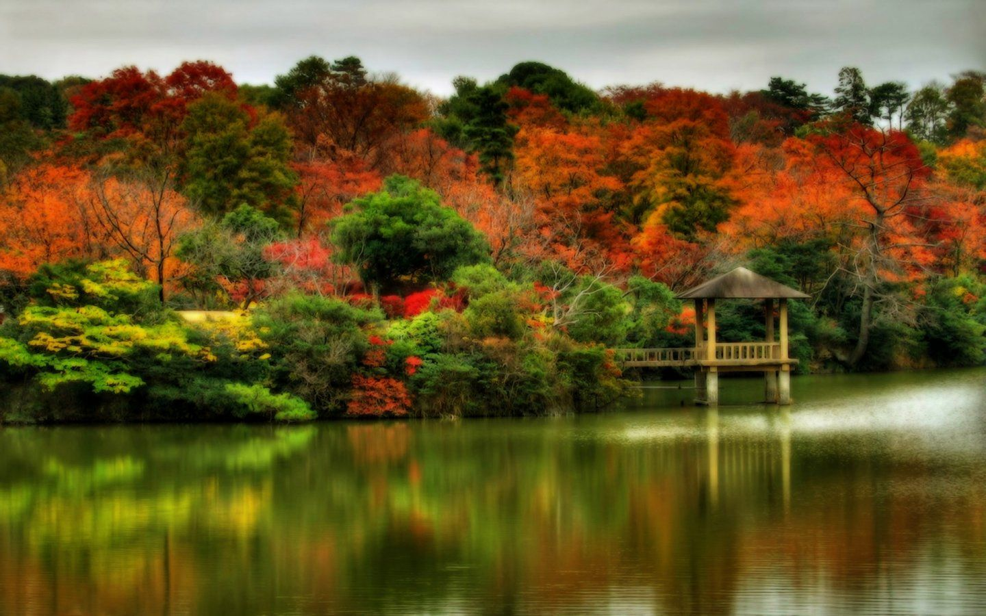 1440x900 Autumn Photos Beautiful Autumn Scenes 1440x900 Wallpapers 1440x900 Wallpapers Desktop Wallpaper Fall Autumn Scenery Fall Scenery Pictures