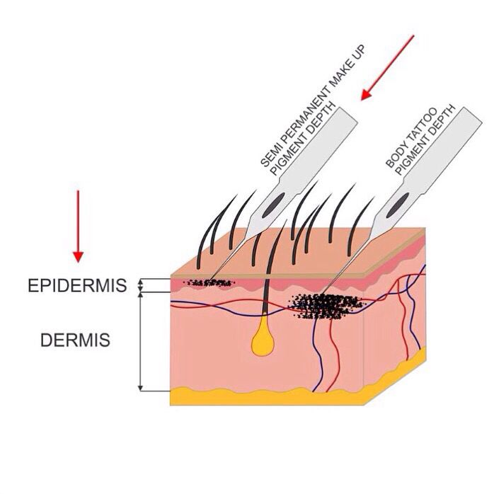 Do Your Research When Looking Into Semi Permanent Brows Most People
