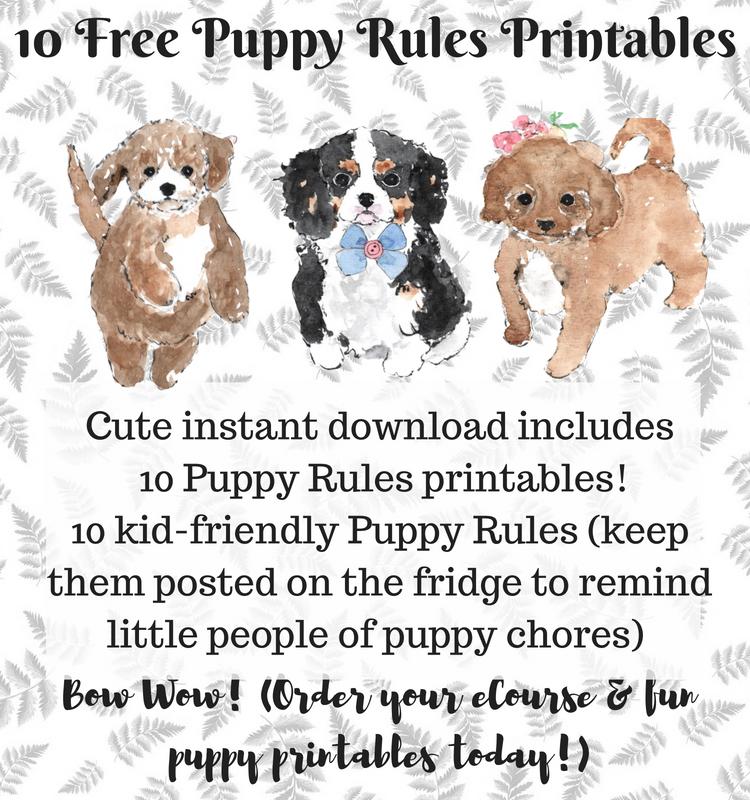 New Puppy 101 Ebook Includes 10 Puppy Rules Printables Flea