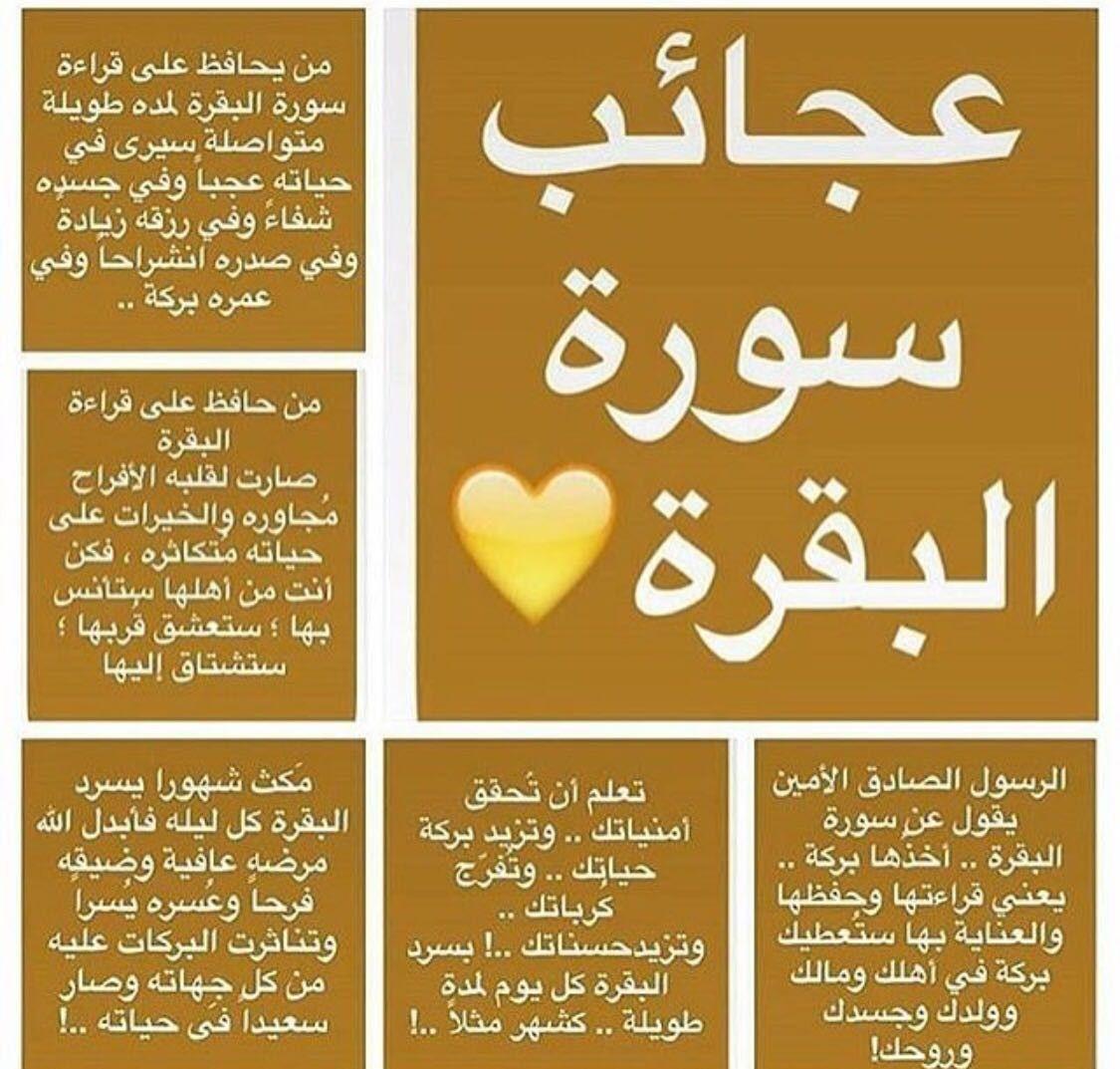 Pin By Lateefa Modo Unico On إيمانيات Islam Facts Islam Beliefs Islamic Quotes Quran