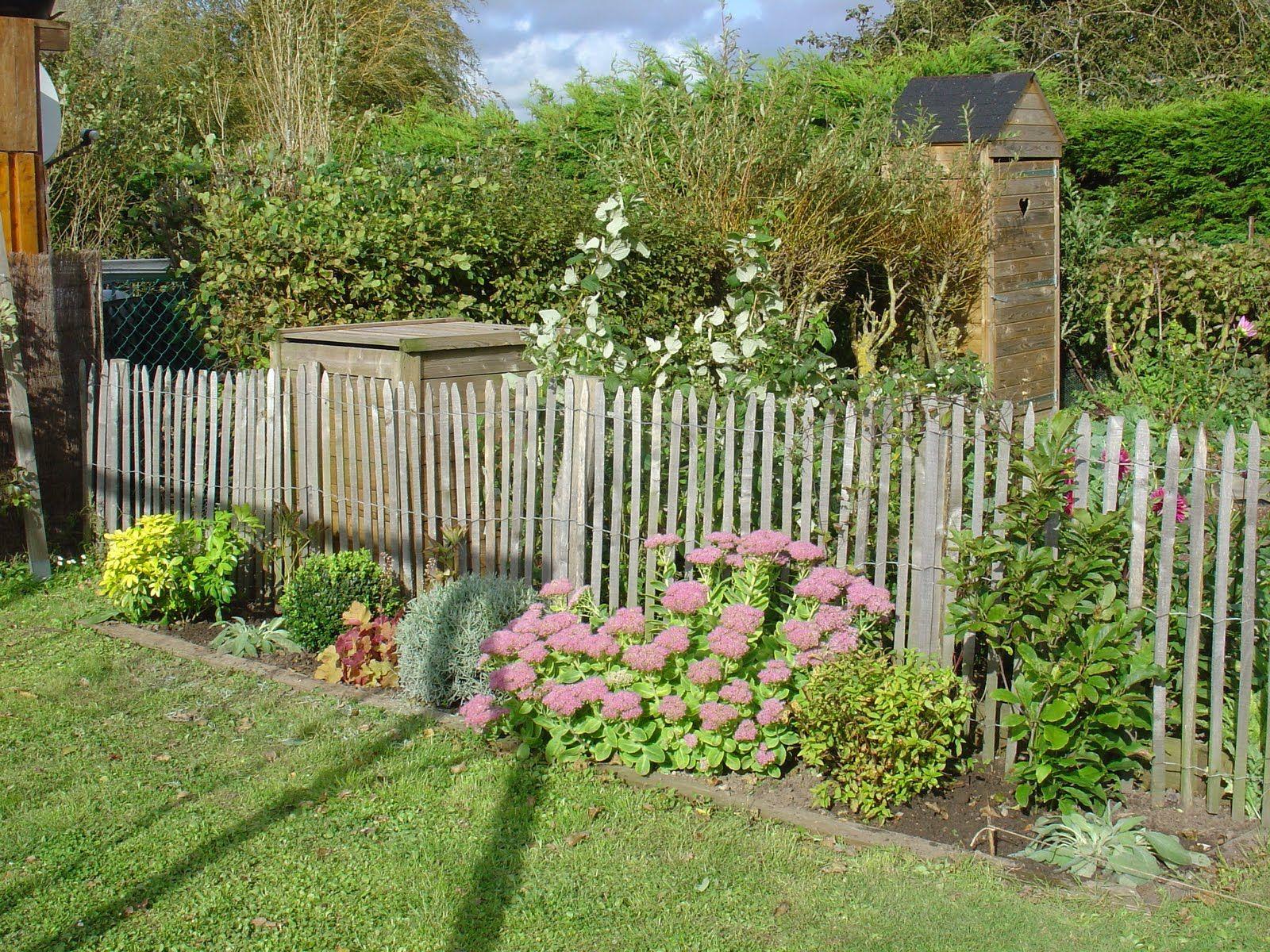 Arbuste Persistant Pour Pot décoration : arbuste persistant en pot [rouen 2721], arbuste