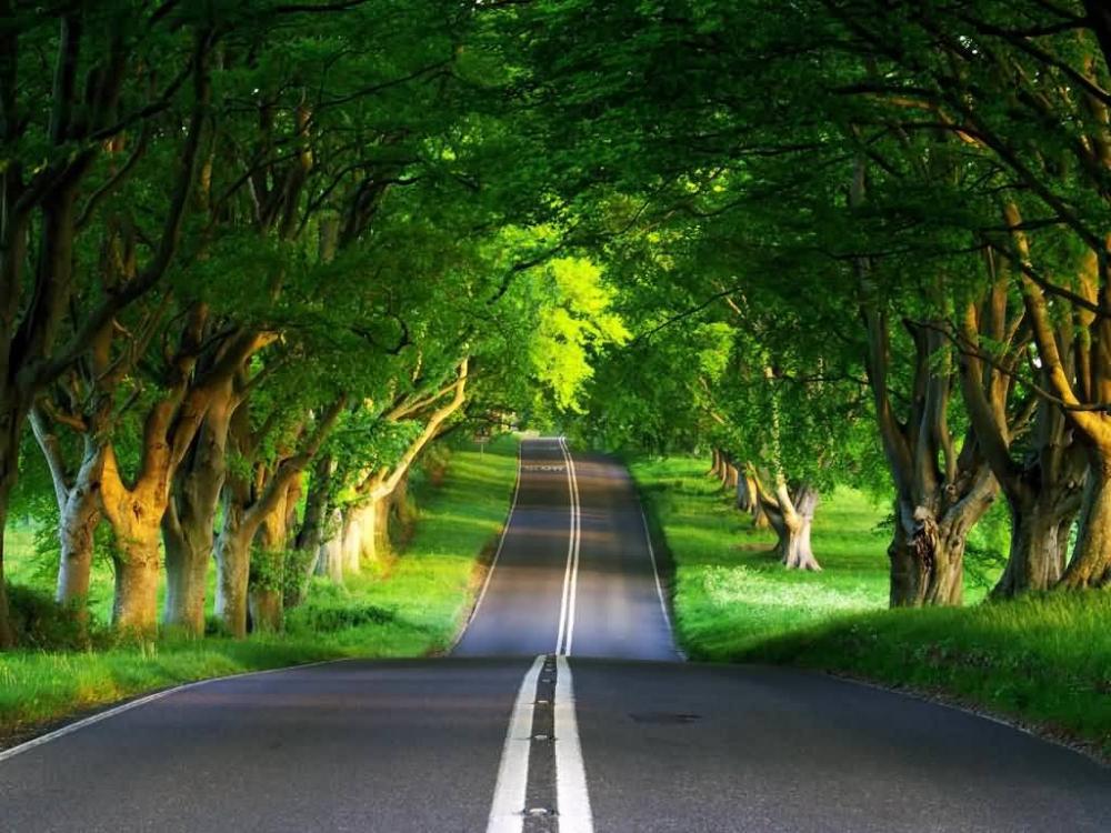 Beautiful Wallpapers Of Nature For Desktop Free Download 3 Pemandangan Wallpaper Alam Yang Indah Wallpaper Alam