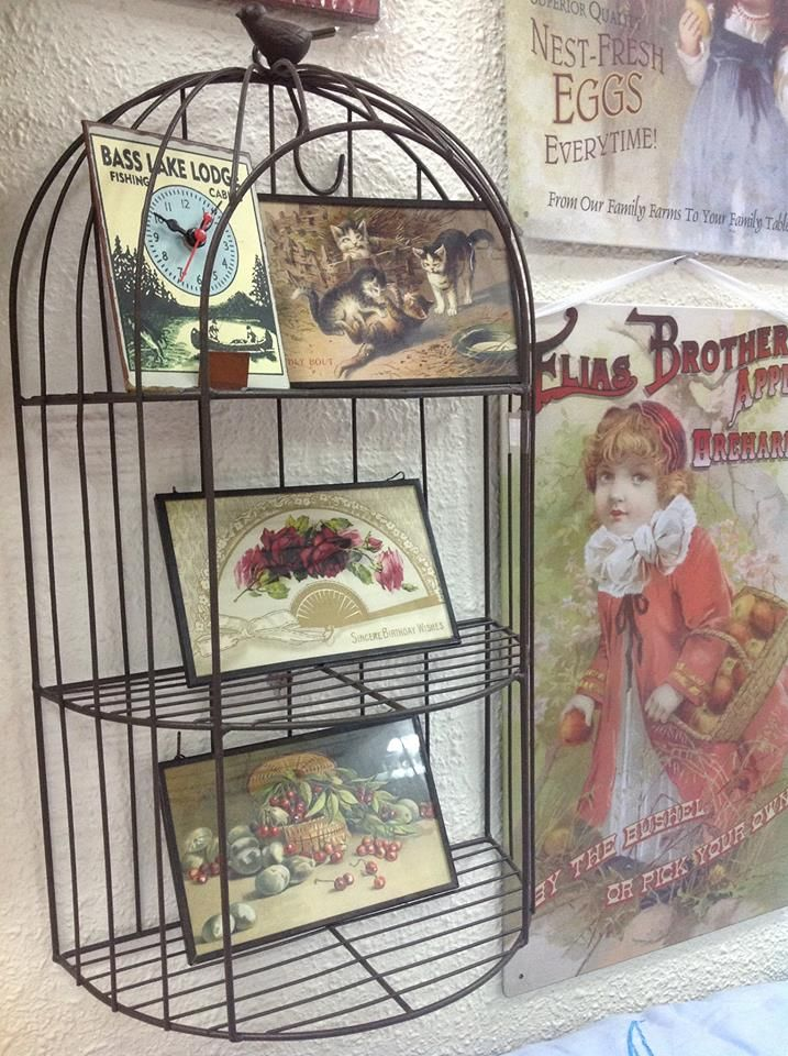 Rustic Half Frame Wired Birdcage Decor mounted on wall. | KK - BIRD ...
