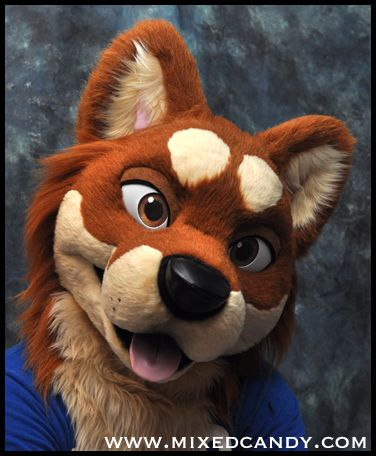 Mixedcandy makes some really awesome dogs!