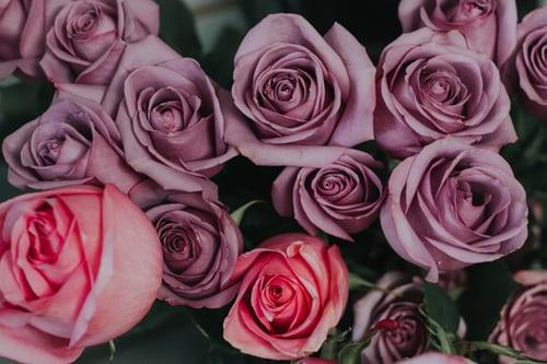 اجمل بوكيه ورد طبيعي صور اجمل بوكيه ورد طبيعي جميل Zina Blog In 2020 Purple Flower Bouquet Flower Bouquet Pictures Purple Flowers