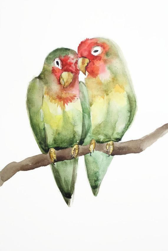 Parrot Bird Watercolor Wall Art Decor Lovebirds Watercolor Print