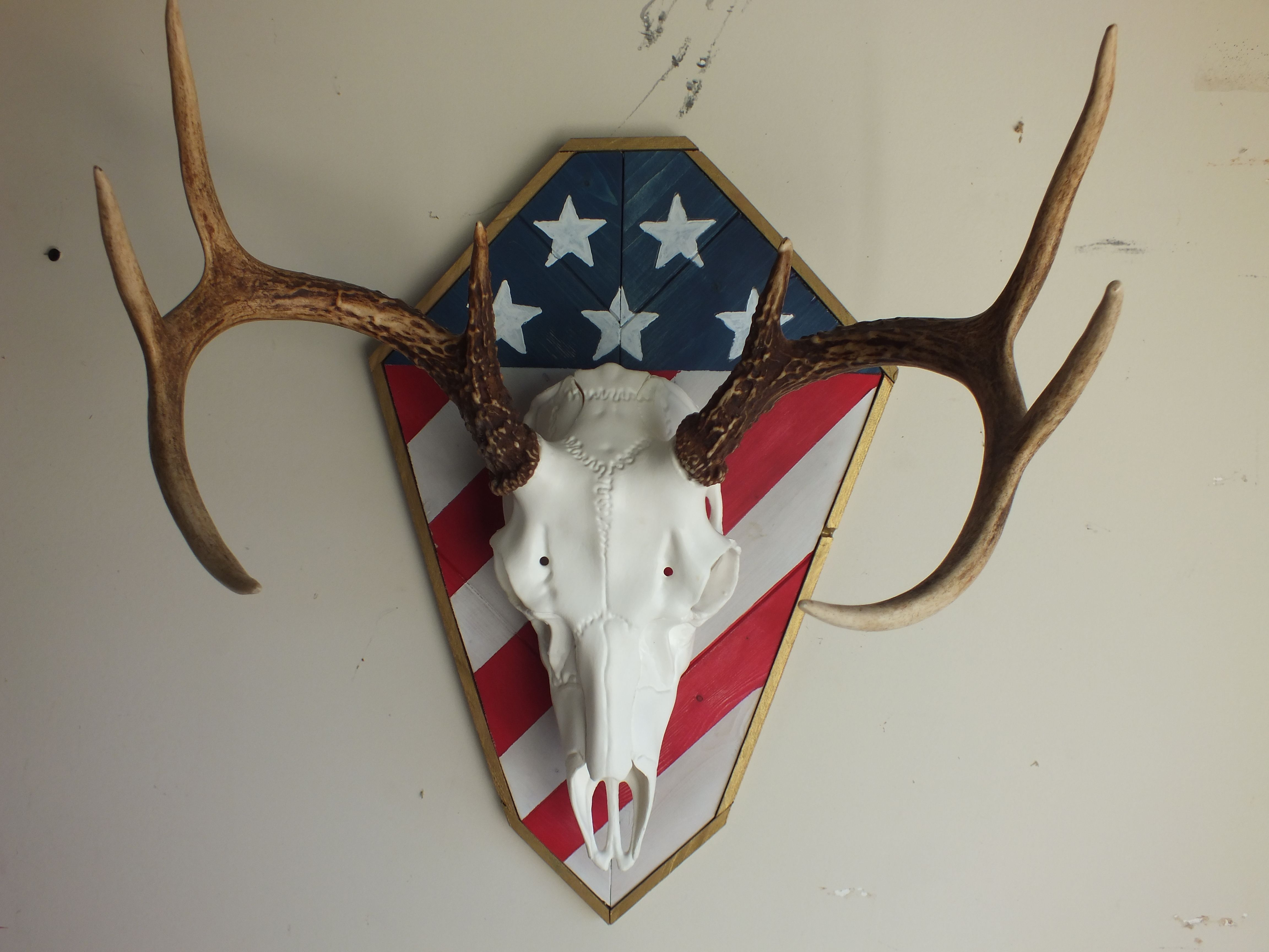 us flag harvest plaques shown with european skull mount