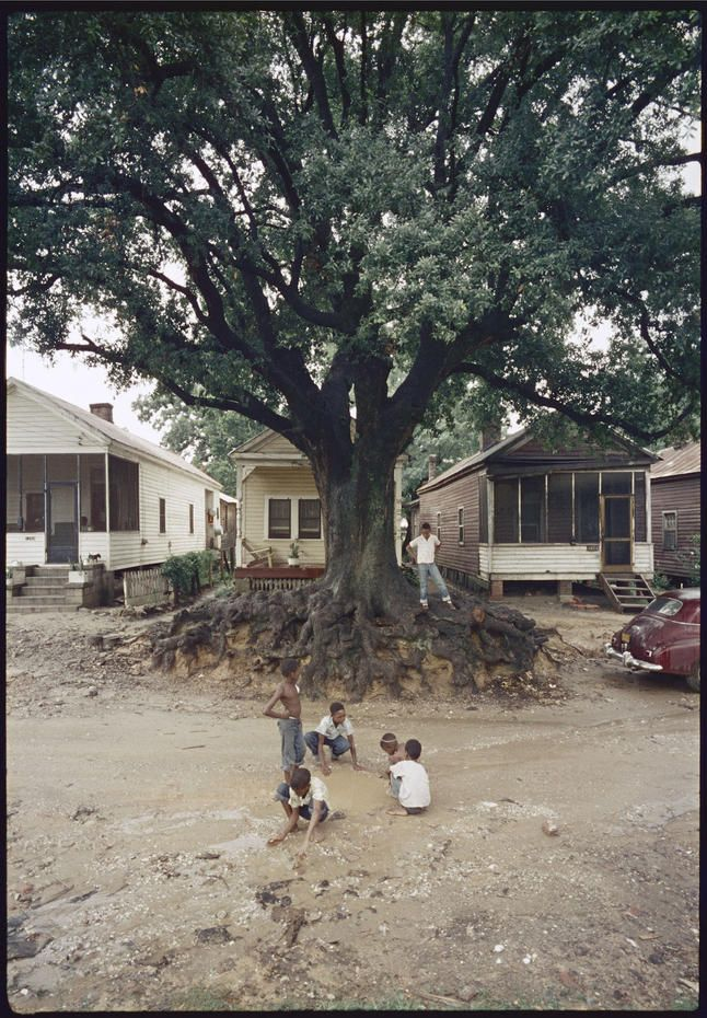 The famed photographer's LIFE magazine images document the lives of an extended African-American family in 1950s segregated Alabama