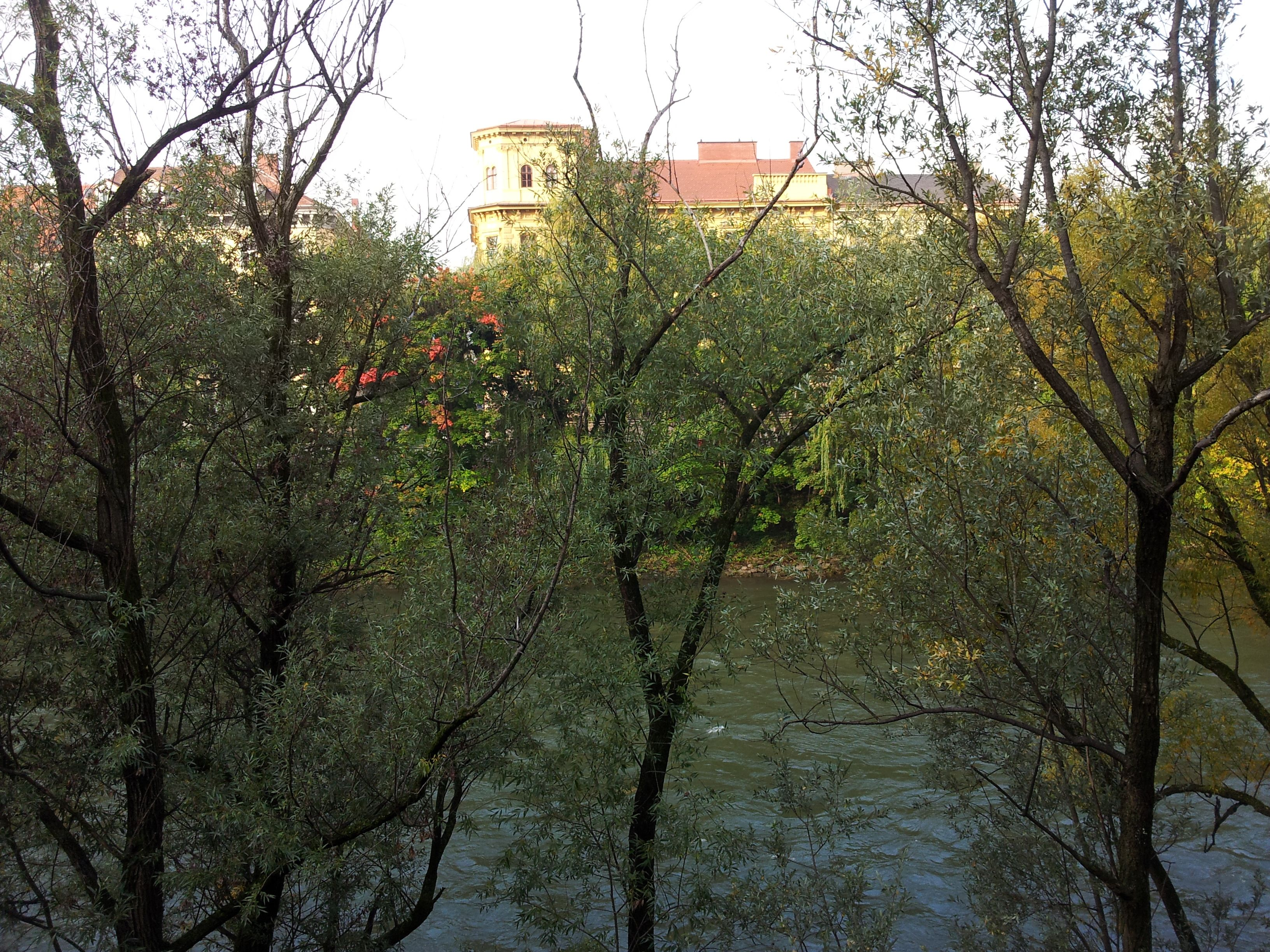 Discovering the river Mur @ Graz