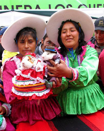 The Peruvian town of Churin is known for its guinea pig festiva