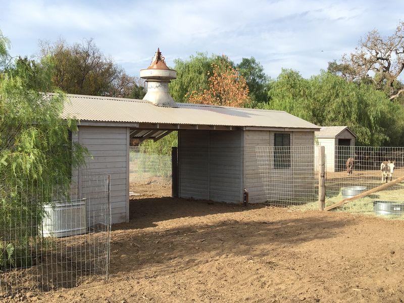 Patina Farm Update A New Little Donkey Barn... Patina