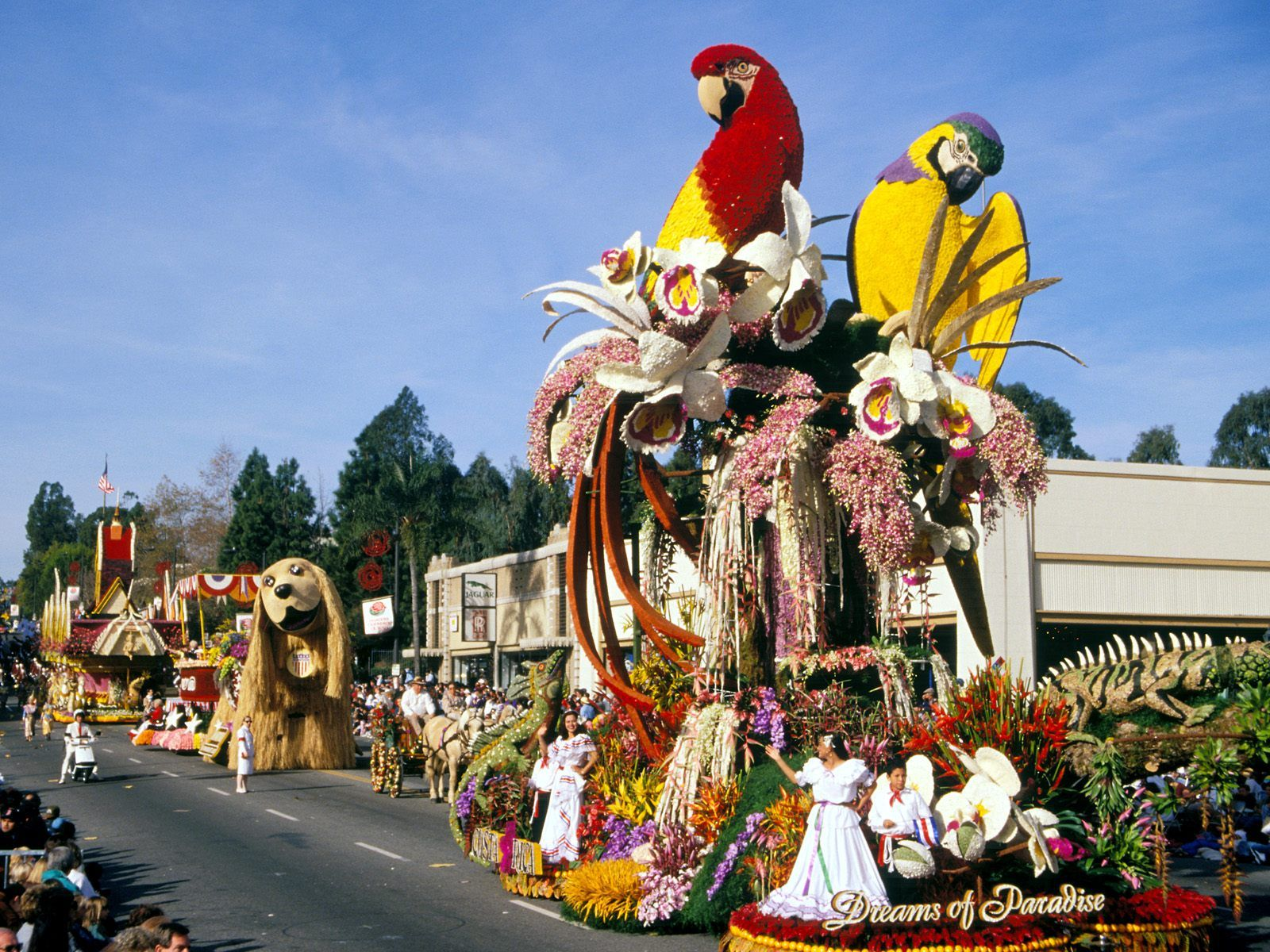 TOURNAMENT OF ROSES PARADE | Beadboard UpCountry: The Tournament ...