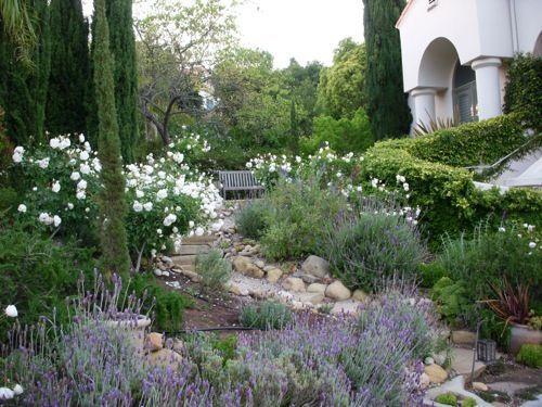 Garden Ideas Mediterranean mediterranean landscape: iceberg roses, lavender, rosemary