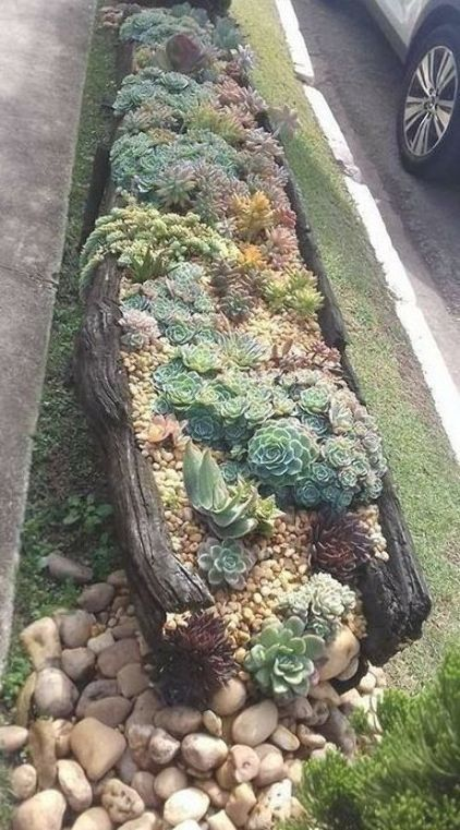 Photo of Succulent landscaping Succulents garden Planting succulents Succulents Garde