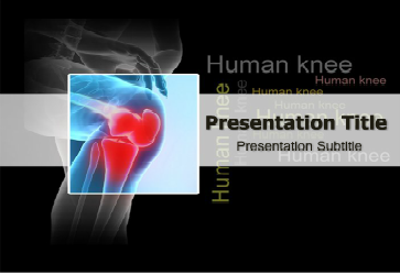 Human knee powerpoint template medical powerpoint templates more human knee powerpoint template medical powerpoint templates more details http toneelgroepblik Image collections