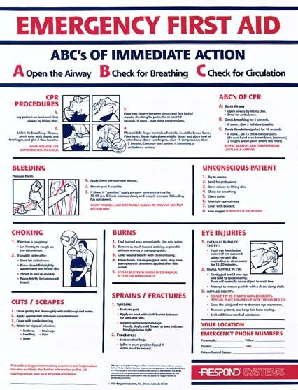 ABCs Of First Aid Laminated Poster