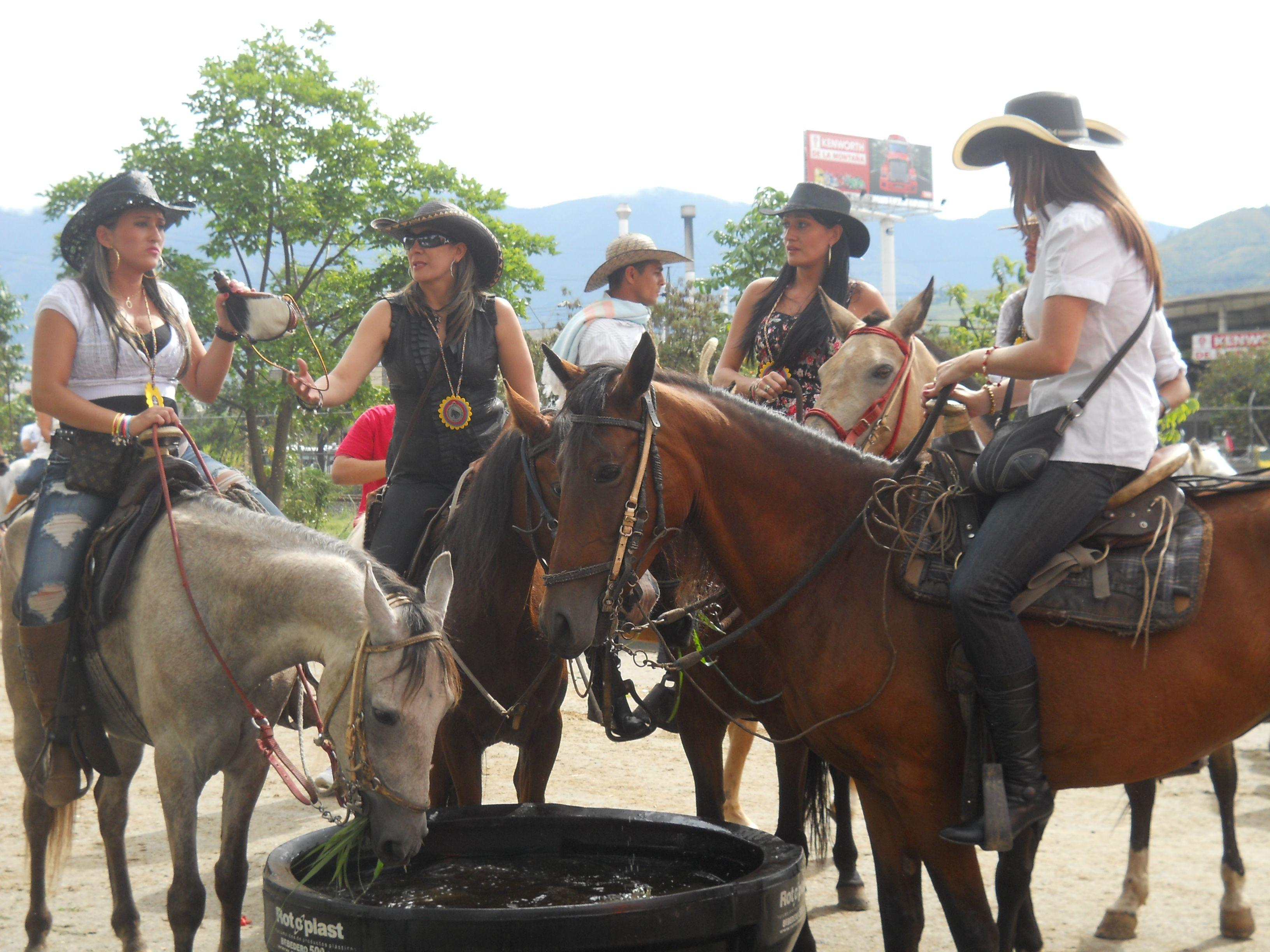 Cabalgata Fotos.Feria De Las Flores Cabalgata Medellin Colombia Colombia