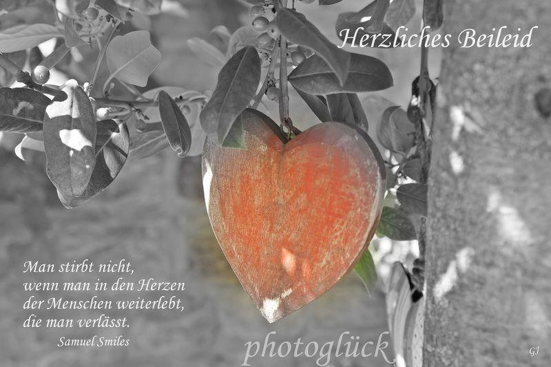 Trauerkarte mit +Herzliches Beileid+ und einem Spruch von Samuel Smiles      Bei meinen Fotos handelt es sich ausschließlich um von mir fotografier...