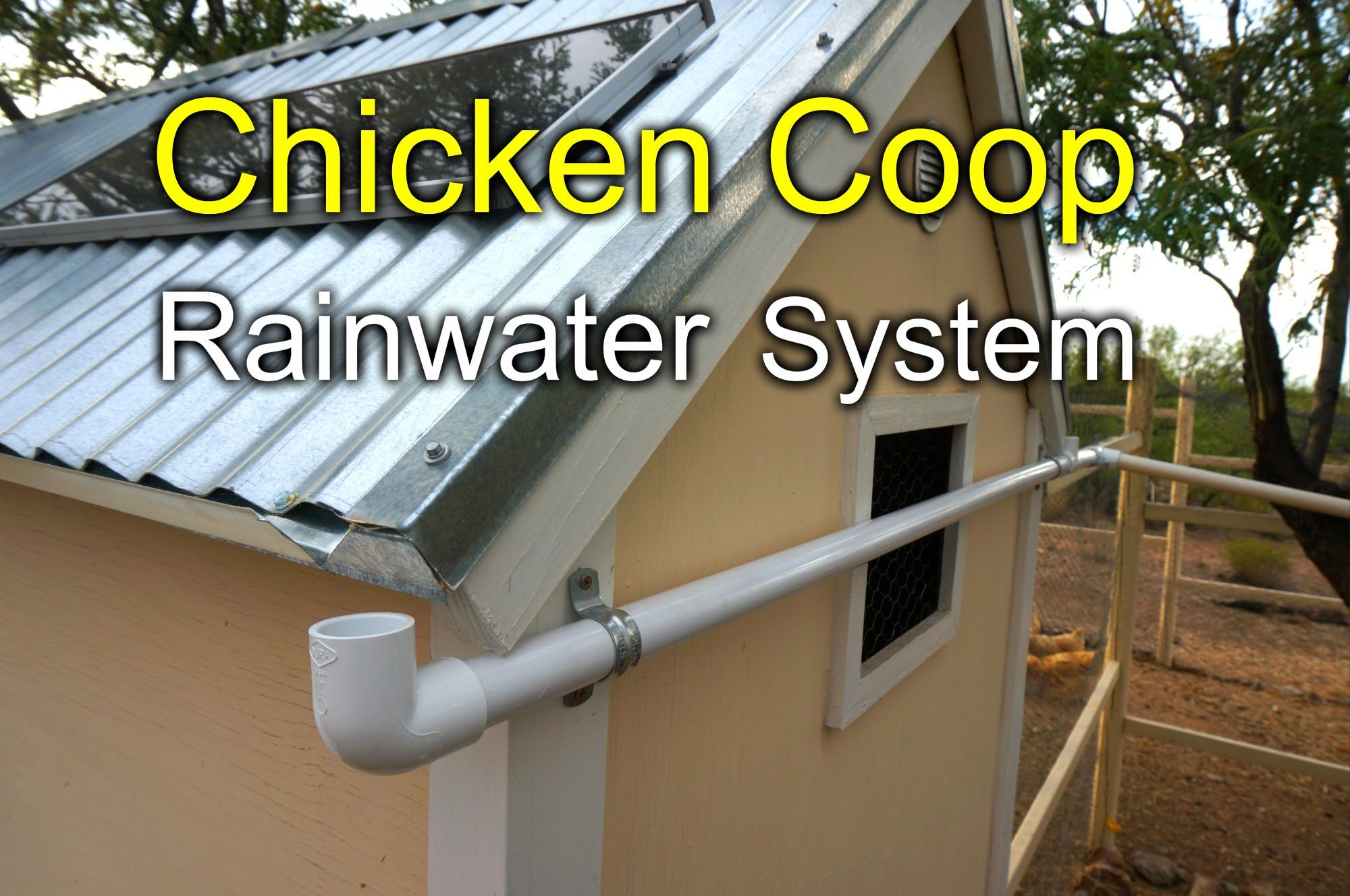 Here Is A Quick How To Tour And Demo Of My Chicken Coop Rainwater Harvesting System It S Pretty Rainwater Harvesting System Chicken Coop Rainwater Harvesting