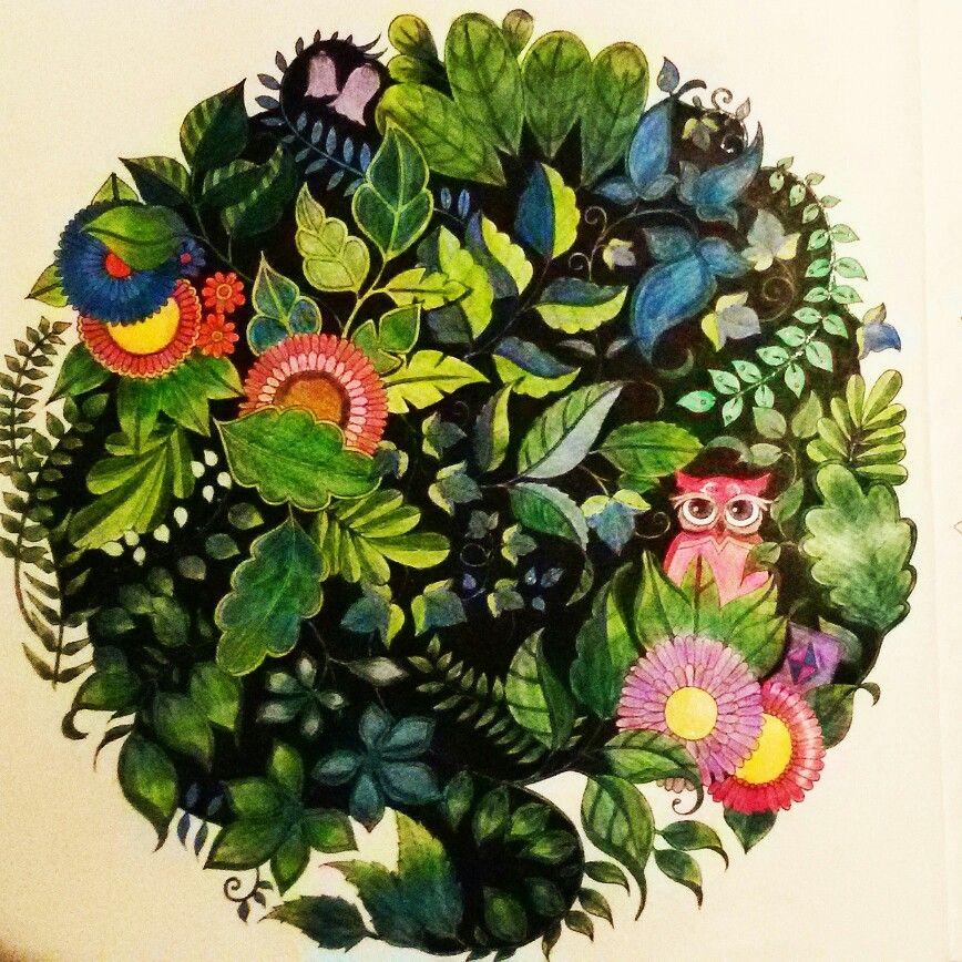 Mandala Owls Enchanted Forest De Corujas Floresta