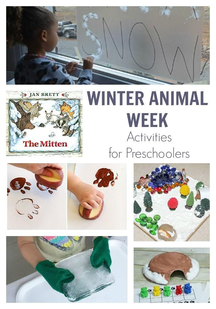 Winter Animal Themed Week for Preschoolers Featuring The Mitten : A week of planned activities for preschoolers on the theme of Winter Animals featuring the classic folktale The Mitten by Jan Brett. A week of planned activities for preschoolers on the theme of Winter Animals featuring the classic folktale The Mitten by Jan Brett. #Winter #Animal #Themed