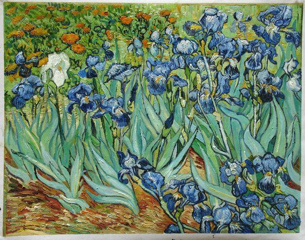 Van gogh paintings google search art pinterest van for Van gogh irises