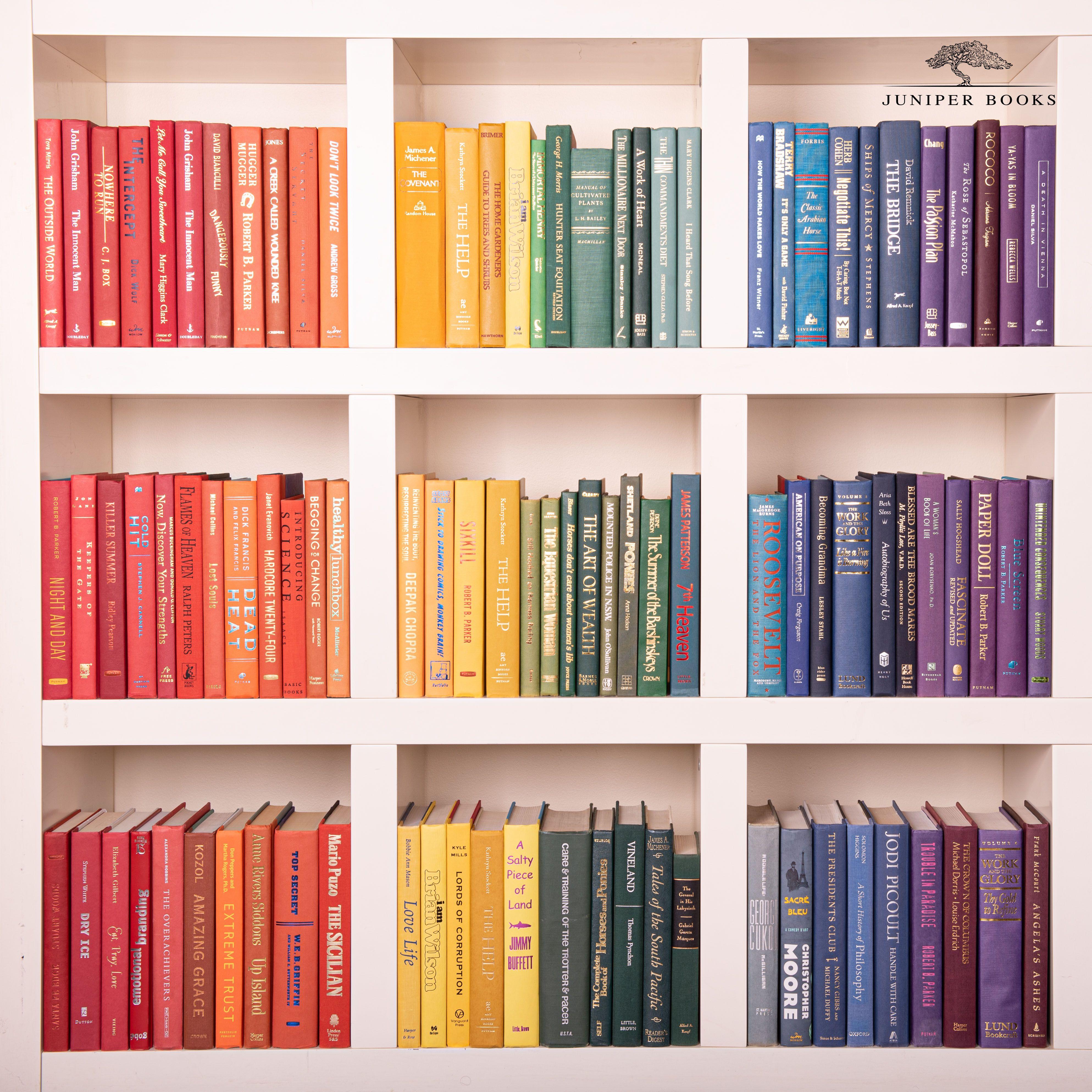 Rainbow Organized Bookshelf