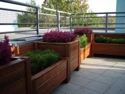 Drewniane Skrzynie Na Warzywa W Ogrodzie Szukaj W Google Plants Garden Flower Pots
