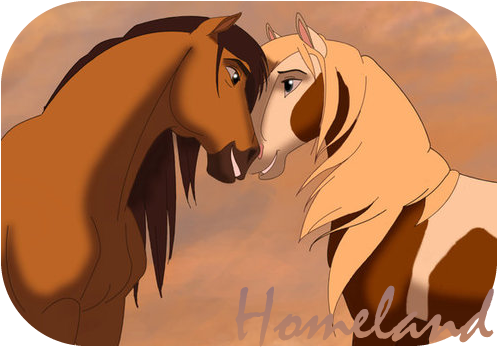 Lovebirds D Spirit The Horse Spirit And Rain Spirit Drawing