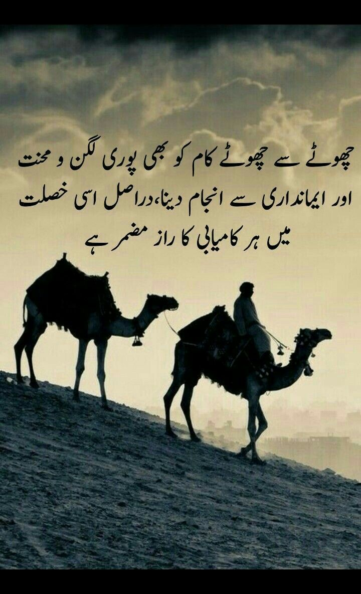 Pin by Samreen ثمرین on Urdu quotes My poetry, Cool