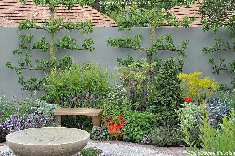 A modern Apothecary Garden (17).jpg | Идеи для сада | Pinterest ...