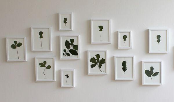 Leaf Silhouettes Art - Jenny Lee Fowler's