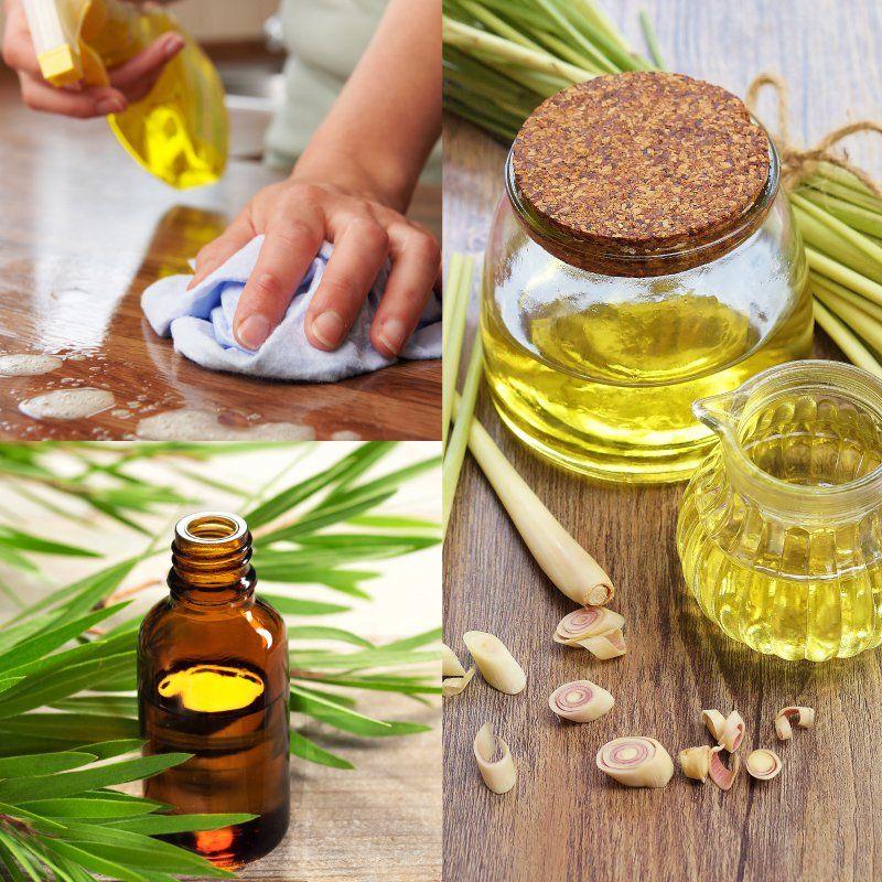 Diy Disinfectant Spray With Tea Tree Lemongrass Recipe